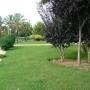Vendo piso obra nueva, 115000€, vistas, parking op. Picassent, Valencia.