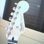 Guitarra -Feder Stratocaster México H-S-S escala de Rosewood