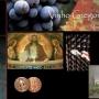 Vinho Gregoriano -Dos Monges Beneditinos em Vinhedo