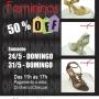 Bazar de Calçados Femininos - 50% OFF