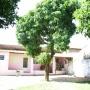 Casa + Terreno