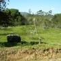Terrenos em canasvieiras