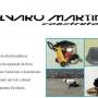 Alvaro Martins Construtora Ltda