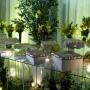 Buffet, decoração e cerimonial