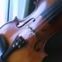 Vendo meu violino profissional
