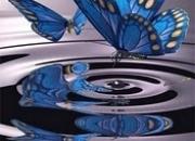 Curso de Arcanos Maiores do  Tarô na Mandala Astrológicas