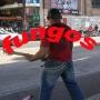 Show com os FUNGOS...