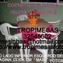 1 aluguel de mesas campinas 19-97014854