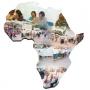 Ensinar na África!
