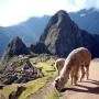 Magic Cusco Peru