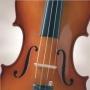 Curso de violino em Sao Paulo