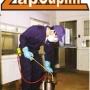 Problemas com insetos? Chame a Desinsetizadora e Descupinizadora ZAPCUPIM!