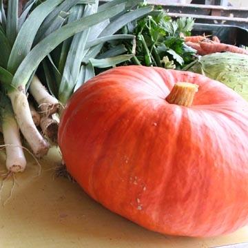 Frutas verduras e legumes porto alegre é na ceasanet