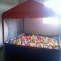 locação de piscina de bolinhas e cama elastica