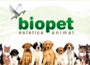 Bio Pet Estética Animal