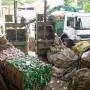 Comércio na Região de Campinas - SP
