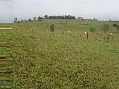 Fazenda 400 alqueire a 15 mil o alq pecuaria 3 anos para pagar cascavel