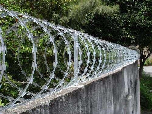 Concertina e redes de proteção