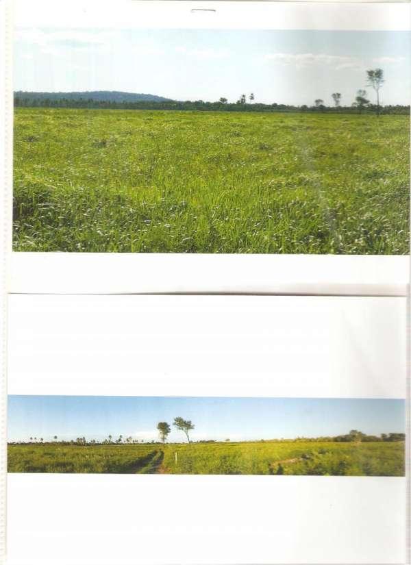Vendo sobre pedido propiedades rurales en paraguay