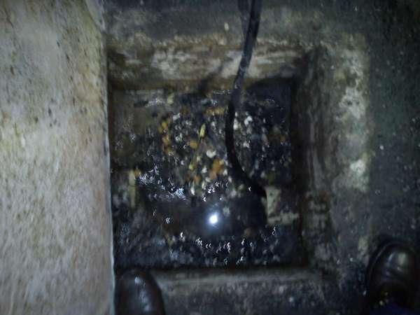 Fotos de Desentuidora e limpa fossa equijatos 2