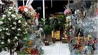 Vendo linda loja presentes e decorações