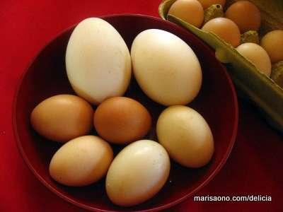 Vendo ovos de pata e galinha caipira. entrego em qualquer bairro em até uma hora.