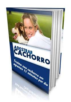 """Seu cachorro gosta de aprontar?adquira já o """"e-book adestrar cachorro"""""""