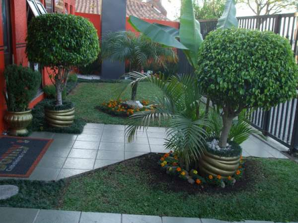 Jardinagem e paisagismo execução e manutenção interno e externo.orçamento s/ compromisso
