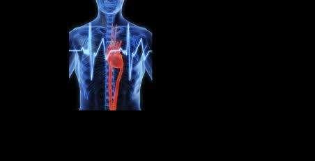 Exames em domicilio, ultrassonografia, ecodoppler, polissonografia, eletroencefalograma, eletrocardiograma, holter 24hs