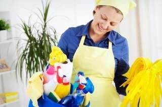 Diarista e personal organizer (serviços limpo com preço justo)
