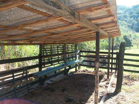 Lindo sítio no alto aririú, 4.0 hectares