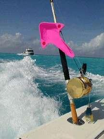Out-rover: a melhor alternativa do pescador de água salgada para estabilizadores de alto custo!