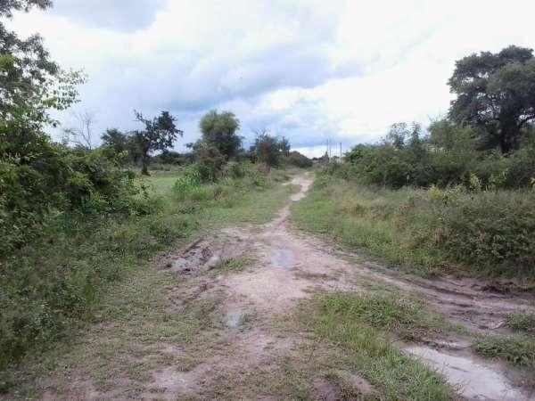 Campo en paraguay vendo