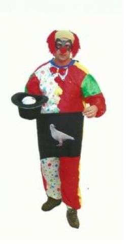 Papai noel/ palhaço e mágico /decoração infantil e locação de brinquedos campinas