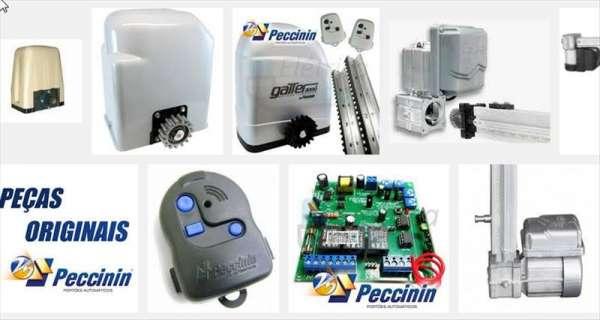 Manutenção de motor para portão eletrônico peccinin campinas e região f: 32031725