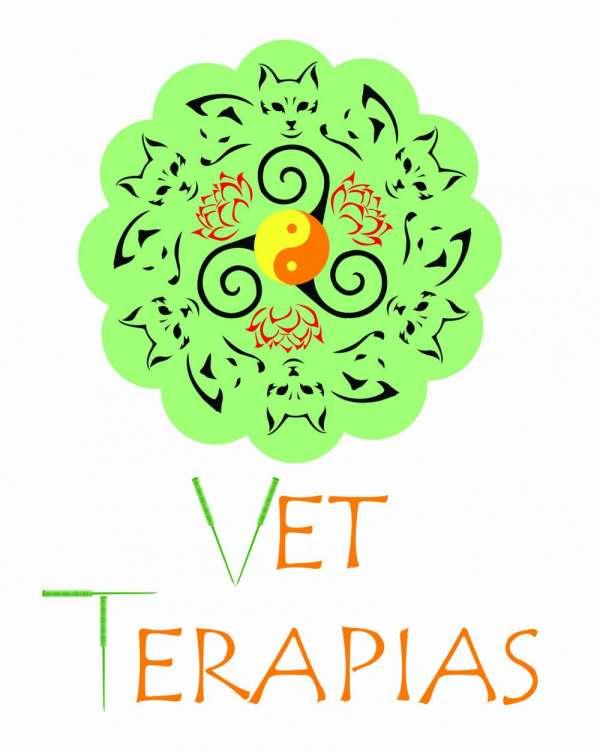 Veterinária domiciliar para cães e gatos sp e abc consultas acupuntura fisioterapias vacinas e etc