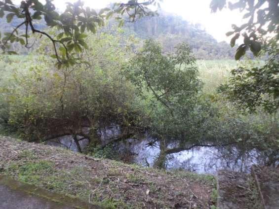 Chacara ribeirão pires x rio grande da serra
