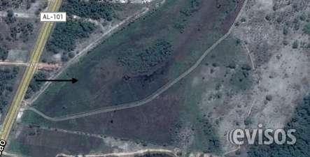 Fotos de Terreno 24.534 ha litoral sul de alagoas ,massagueira 10