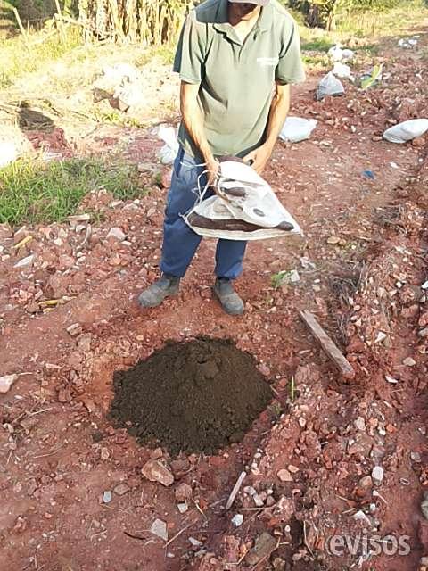 Terra adubada em são paulo zap 11-98621-3420
