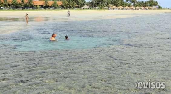 Chale ilha bela - srrambí - ipojuca - recife - pernambuco - brasil