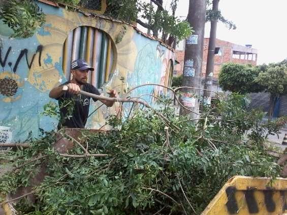 Podador de árvores