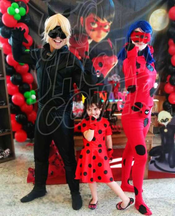 Ladybug e catnoir – show cover personagens
