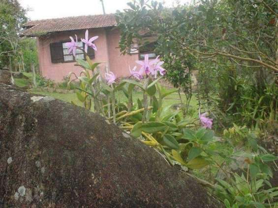 Fotos de Sítio 2 hectares - escritura pública - vargem grande - floripa/sc 11