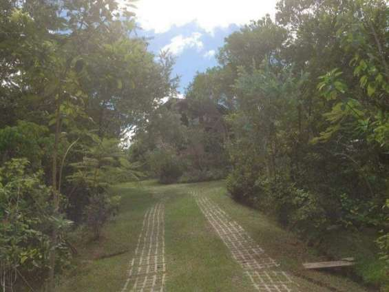 Fotos de Sítio 2 hectares - escritura pública - vargem grande - floripa/sc 3