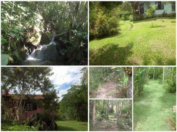 Fotos de Sítio 2 hectares - escritura pública - vargem grande - floripa/sc 4