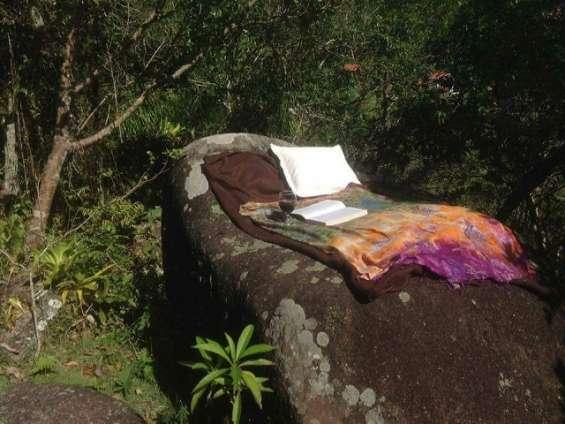 Fotos de Sítio 2 hectares - escritura pública - vargem grande - floripa/sc 5