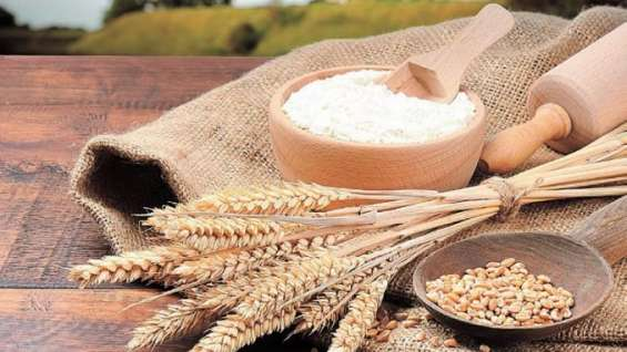 Eu me vejo oferecendo farinha de trigo.