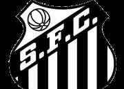 Convite socio torcedor do santos futebol clube